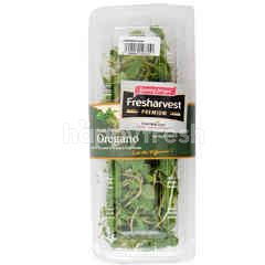Fresharvest Premium Oregano