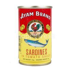 Ayam Sardines Tomato Sauce