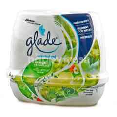 Glade Scented Gel (Morning Freshness)