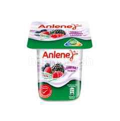 Anlene Mixed Berries Flavoured Yogurt