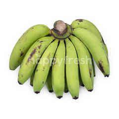 Ambon Banana