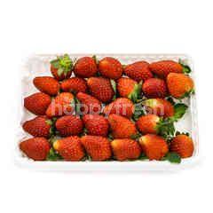 Shiawase Strawberry
