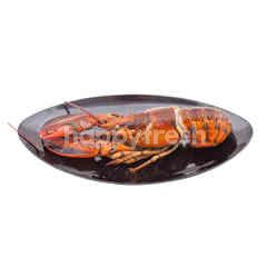 Food Diary Fz Whole Cooked Lobster