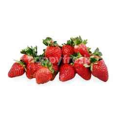 FreshBox Stroberi
