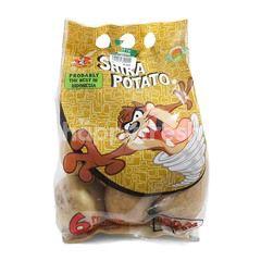 World Farm Shira Potato