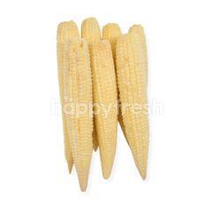Bimandiri Baby Corn