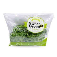 Sweet & Green Frillice Iceberg