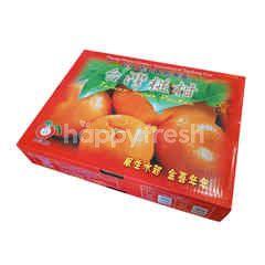 Jeruk Taiwan Ponkam Kotak Hadiah