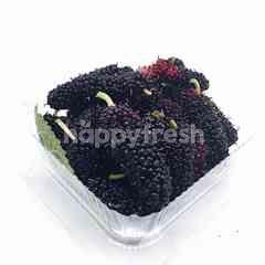 Sweet & Green Mulberries