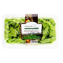 HIGHLAND FRESH Butterhead Lettuce