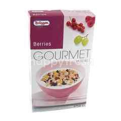 Briiggen Gourmet Muesli Berries