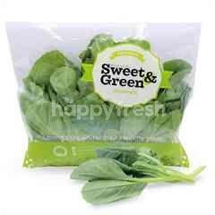 Sweet & Green Hong Kong Chinese Kale