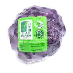 Suan Mokkh Premium Organic Purple Cabbage