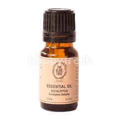 The Olive Tree Eucalyptus Essential Oil (10ml)