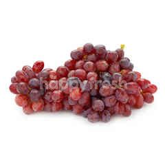 Seedless Red Grape