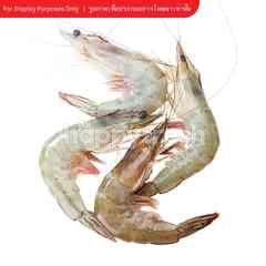 Gourmet Market Shrimp Size M No.2