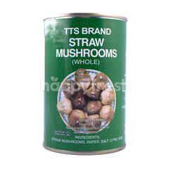 Tts Straw Mushroom Whole