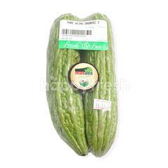 Masada Organic Green Bitter Melon