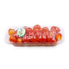 Gapps Grape Chery Tomato