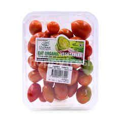 D'LONEK Organic Cherry Tomato