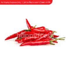 Tesco Red Bird Chilli