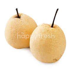 Big C Honey Pear