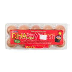 CBB Farm DHA Eggs