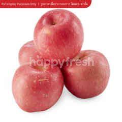 Gourmet Market Fuji Apple No.28