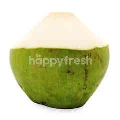 Zenxin Coconut