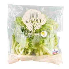 Wb Organic Fillie Iceberg