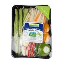 Natural & Premium Food Organic Som Tum Set (Papaya Salad)