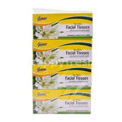 Giant Facial Tissues (4 Boxes)