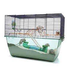 Savic Habitat X-Large Hamster (Navy Blue)