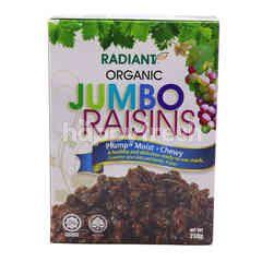 Radiant Organic Jumbo Raisins