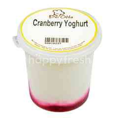 Bei Otto Cranberry Yogurt