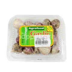 Agrofood Solo Garlic