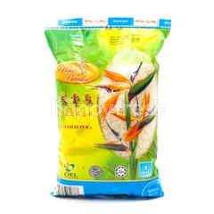 BIRD OF PARADISE Siam Super Rice