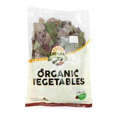 Organic Land Organic Red Spinach