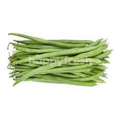 Spring Bean
