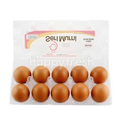 Seri Murni Chicken Eggs (Large)