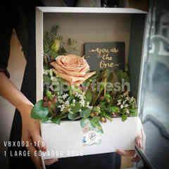 Heartis Vertical display flower box 5