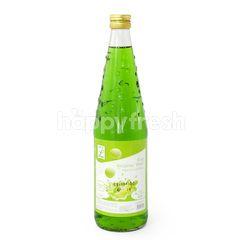 Choice L Save Melon Syrup