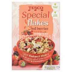 Tesco Special Flakes