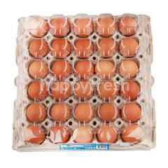 เทสโก้ ไข่ไก่สด ไซส์ S (30 ฟอง)