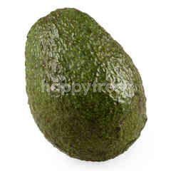 Gourmet Market Avocado No.28