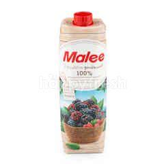 มาลี น้ำผักผลไม้รวม สูตรมัลเบอร์รี่