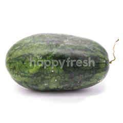 Black Beauty Melon
