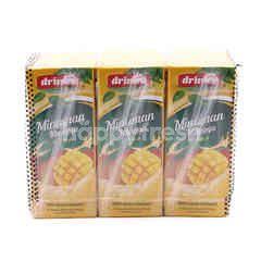 DRINHO Mango Drink 250ml