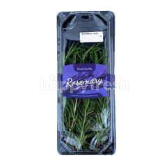 Daun Rosemary