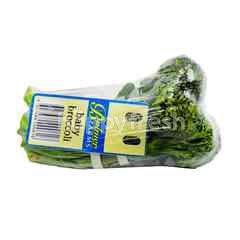 Bulmer Farms Baby Broccoli